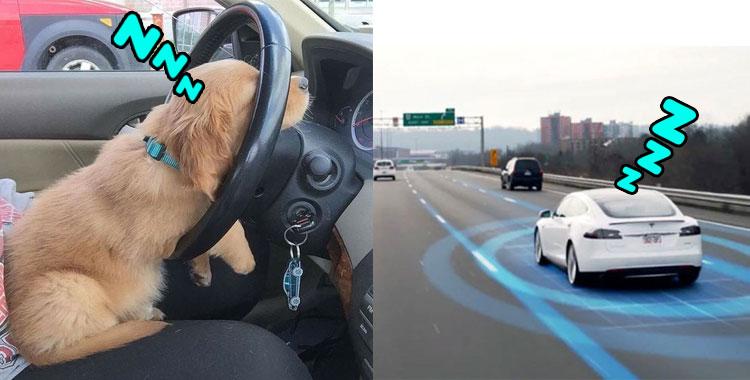 TESLA MODEL S : จะเกิดอะไรขึ้น ถ้าหากคนขับหลับระหว่างใช้งานโหมด AUTOPILOT
