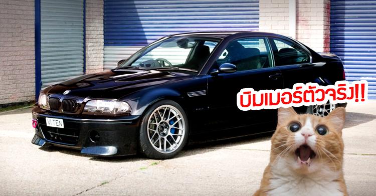 [วิดีโอ] BMW E46 วางเครื่อง V10 (จาก M5) คือที่สุดของสายบิมเมอร์